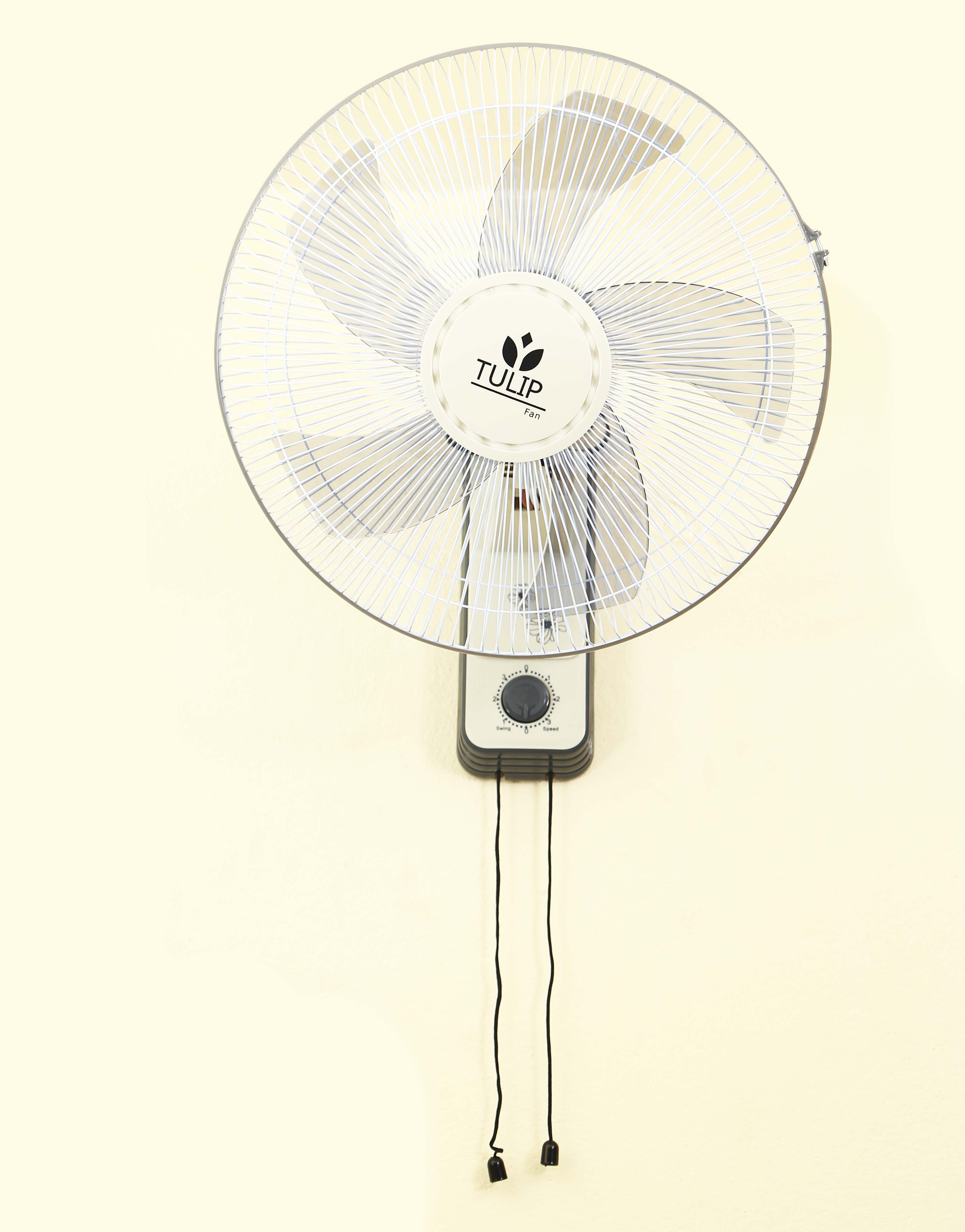 Tulip Wall Fan-CHARM 909