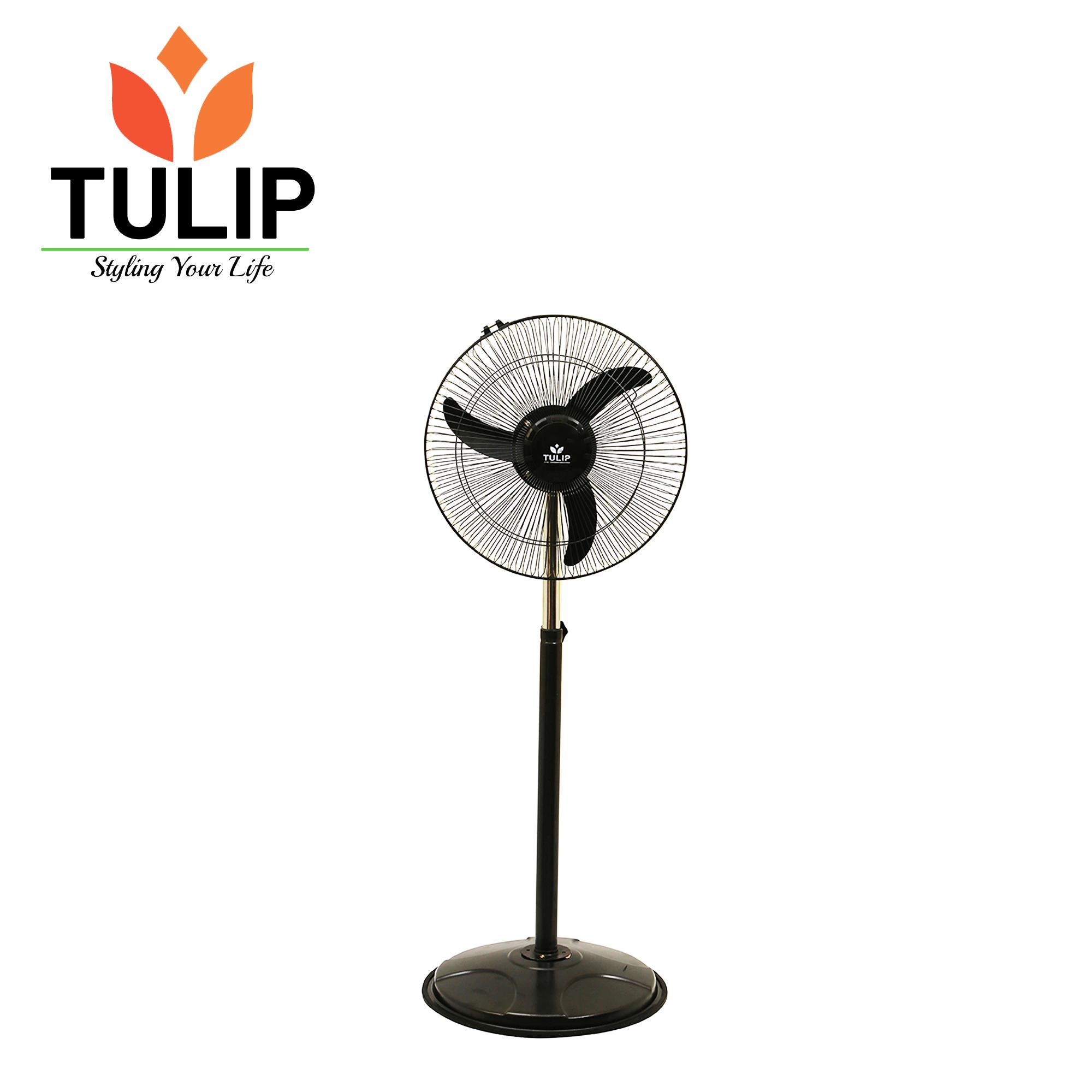 Tulip Stand Fan -FARRATA