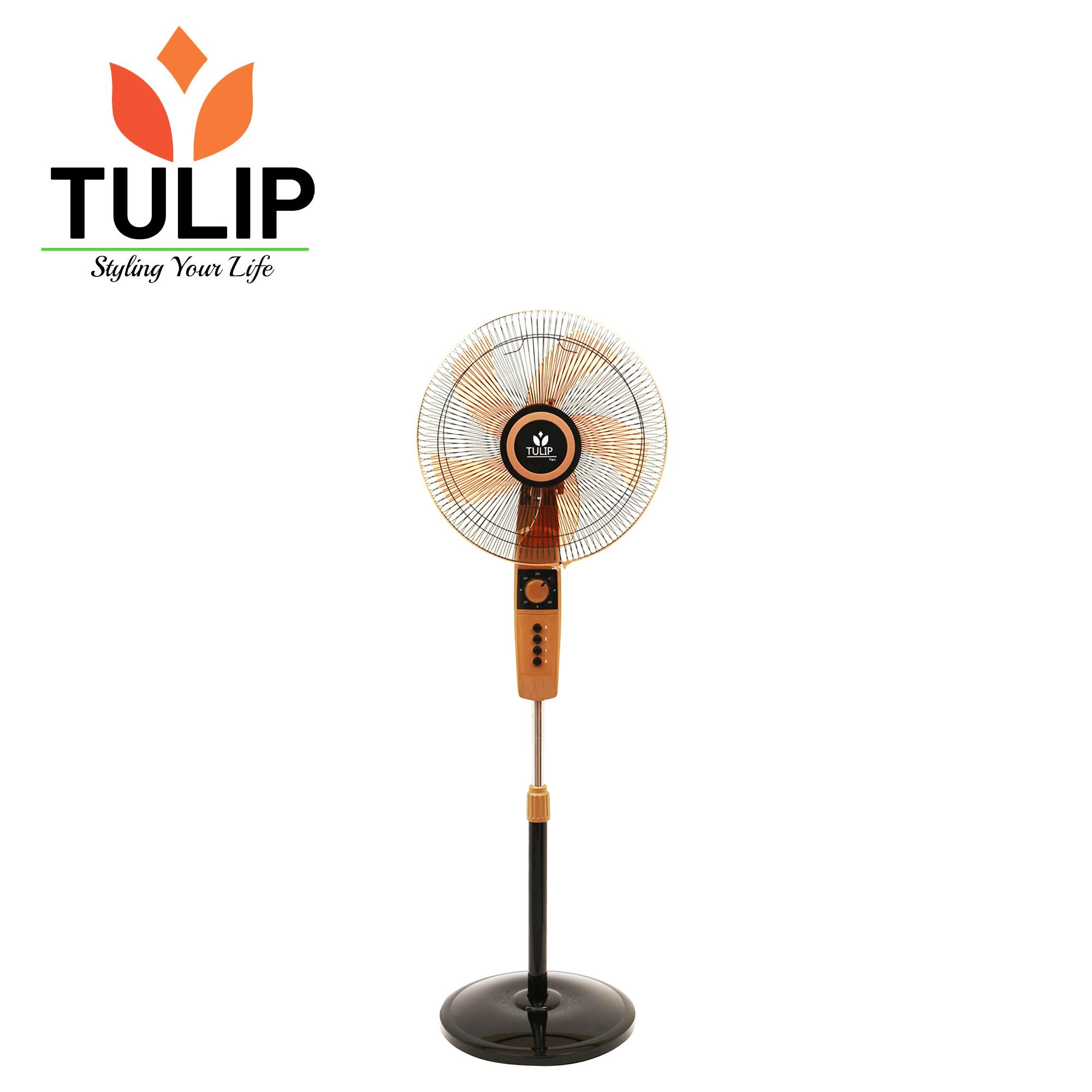 Tulip Stand Fan -608