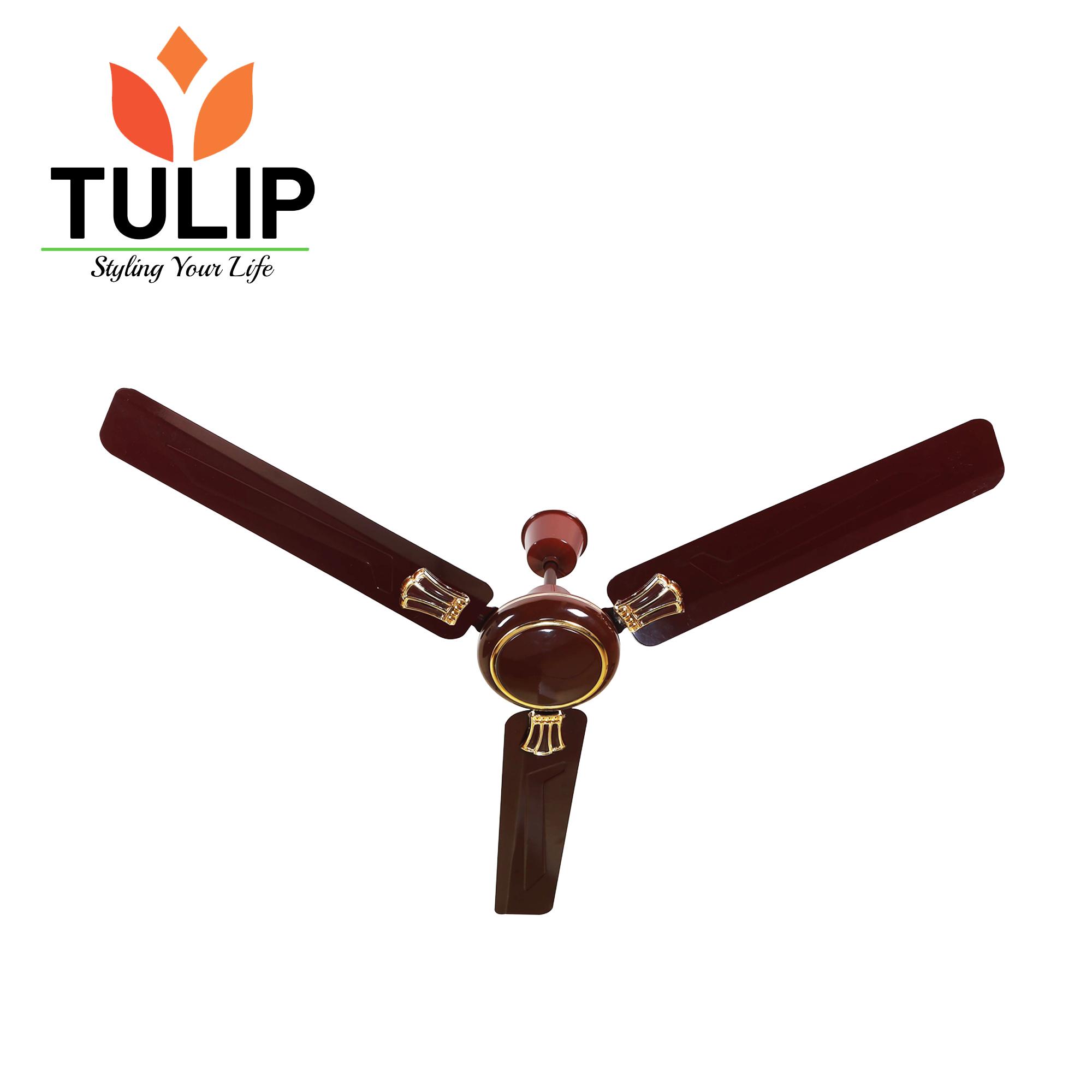 tulip-celling-fan-zigma101-48
